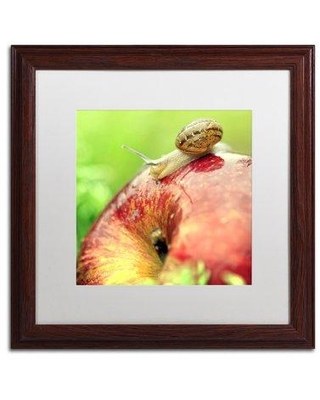 """Trademark Fine Art The Very Hungry Snail by Beata Czyzowska Young Framed Photographic Print BC0152-W1111BMF / BC0152-W1616BMF Size: 16"""" H x 16"""" W x 0.5"""" D Matte Color: White"""