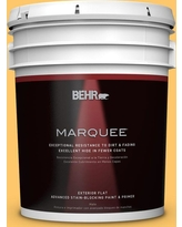 Sweet Savings On Behr Ultra 5 Gal Home Decorators Collection Hdc Sp16 05 Daffodil Flat Exterior Paint Primer Yellow