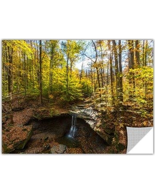 """ArtWall 'Blue Hen Falls' by Cody York Photographic Print Removable Wall Decal 0yor004ap Size: 24"""" H x 36"""" W x 0.1"""" D"""