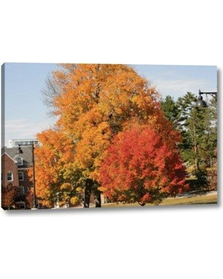 """Millwood Pines 'Autumnal 4' Photographic Print on Wrapped Canvas BI152174 Size: 16"""" H x 24"""" W x 1.5"""" D"""