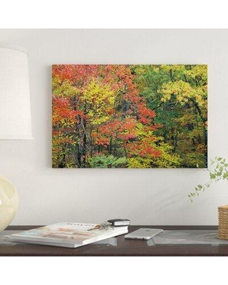 """East Urban Home 'Fall Foliage at Fishers Gap Shenandoah National Park Virginia' Photographic Print on Canvas ESBH8142 Size: 18"""" H x 26"""" W x 1.5"""" D"""