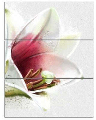 """Design Art 'Beautiful Lily Flower Watercolor' 3 Piece Painting Print on Wrapped Canvas Set, Canvas & Fabric in Brown/White, Size Large 33""""-40"""""""