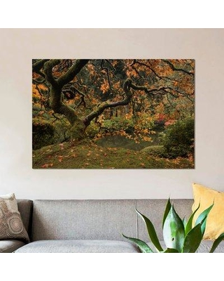 East Urban Home 'Golden Fall at the Garden' Photographic Print on Canvas EAUB4167 Size: 12'' H x 18'' W x 0.75'' D