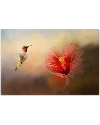 "Trademark Fine Art 'Romancing the Hibiscus' Graphic Art Print on Wrapped Canvas ALI14627-C Size: 12"" H x 19"" W"