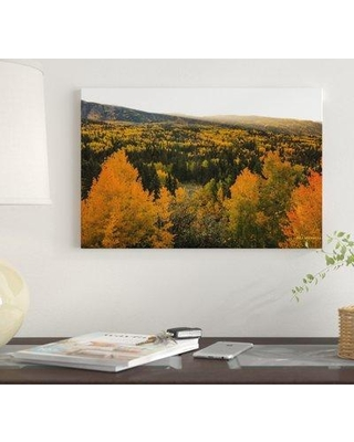 "East Urban Home 'Autumn Sunrise' By Bill Sherrell Graphic Art Print on Wrapped Canvas EUME7129 Size: 18"" H x 26"" W x 1.5"" D"