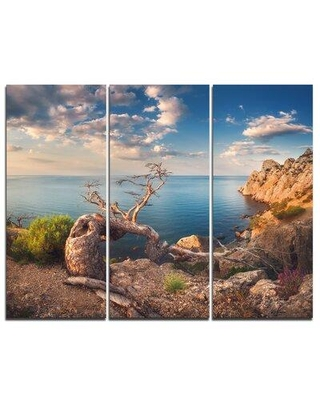 Design Art Sunny Morning with Old Tree - 3 Piece Graphic Art on Wrapped Canvas Set PT9712-3P