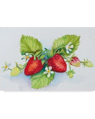 "Trademark Art 'Berry Border' Acrylic Painting Print on Wrapped Canvas ALI30396-CGG Size: 30"" H x 47"" W x 2"" D"