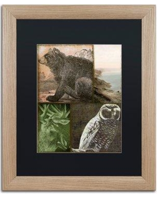 """Trademark Art 'Cabela III' by Color Bakery Framed Graphic Art ALI4280-T1 Mat Color: Black Size: 20"""" H x 16"""" W x 0.5"""" D"""