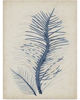 "Highland Dunes 'Indigo Coral V' Drawing Print on Wrapped Canvas W000339269 Size: 32"" H x 24"" W x 2"" D"