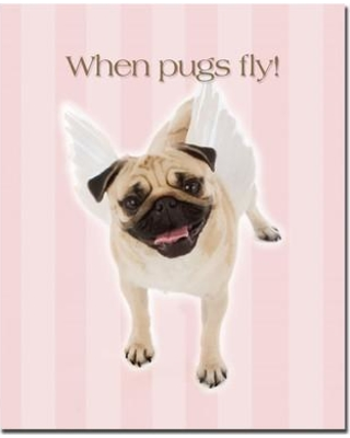 """Trademark Fine Art """"Pug Angel"""" by Gifty Idea Greeting Cards And Such Graphic Art on Wrapped Canvas KC021-C2632GG"""
