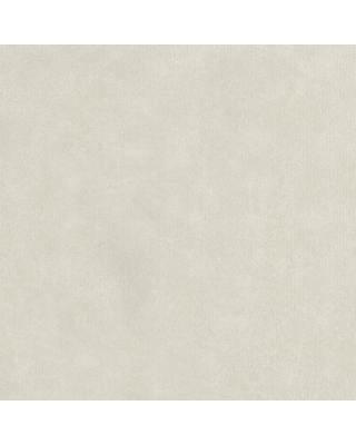 """Vintondale Paint Textured 32.7' L x 20.5"""" W Smooth Wallpaper Roll Charlton Home Color: Ivory"""
