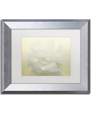"""Ebern Designs 'Pure White Peony' Framed Photographic Print ENDE1538 Size: 11"""" H x 14"""" W x 0.5"""" D Frame Color: Birch"""