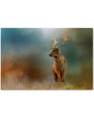 "Trademark Art 'Painterly Fallow Buck' Graphic Art Print on Wrapped Canvas ALI14356-C Size: 30"" H x 47"" W"