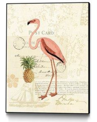 """Bay Isle Home 'Floridian IV' Framed Graphic Art Print BYIL2201 Size: 28"""" H x 22"""" W"""