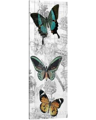 """JaxsonRea 'Butterflies Are Free 2' by Kimberly Allen Graphic Art on Wrapped Canvas SC2614 Size: 60"""" H x 20"""" W x 1.5"""" D"""