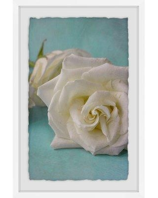 """House of Hampton 'The Original White Rose' Graphic Art Print HOHM8210 Size: 12"""" H x 8"""" W x 1.5"""" D Format: White Framed with Deckled Edges"""