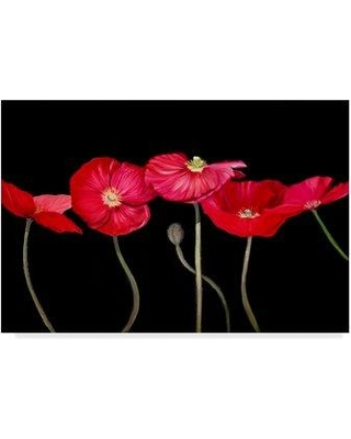 """East Urban Home 'Dramatic Poppies' Acrylic Painting Print on Wrapped Canvas W000327200 Size: 30"""" H x 47"""" W x 2"""" D"""