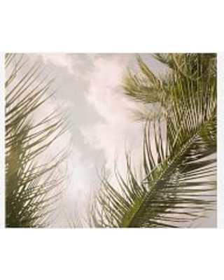 """Airy Palm Tree Framed Print by Jane Wilder, 11x13"""", Wood Gallery Frame, White, No Mat"""