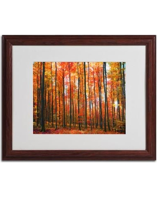 """Trademark Art """"Dominated"""" by Philippe Sainte-Laudy Matted Framed Photographic Print PSL0194-B1114MF / PSL0194-B1620MF Size: 16"""" H x 20"""" W x 0.5"""" D Frame Color: Black"""