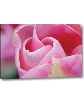 "Winston Porter 'Pink Tulip I' Photographic Print on Wrapped Canvas BF155750 Size: 21"" H x 32"" W x 1.5"" D"