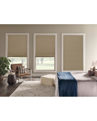 Home Decorators Collection Cordless Light Filtering Cellular Shade Custom