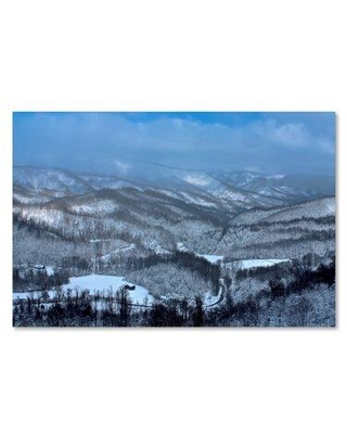 "Trademark Fine Art 'Mountain View' Photographic Print on Wrapped Canvas ALI15885-C Size: 30"" H x 47"" W"
