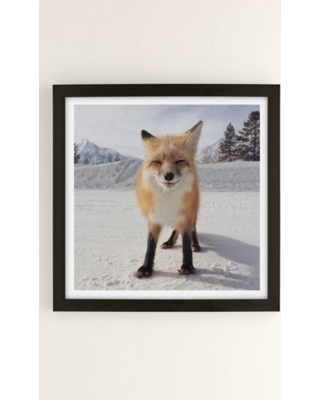 Michael O'Neal Red Fox Art Print - Black 30X30 at Urban Outfitters