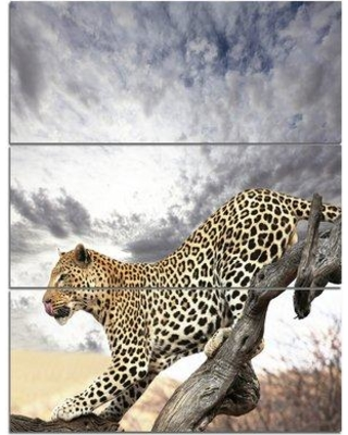 "Design Art 'Leopard on Tree under Cloudy Sky' 3 Piece Photographic Print on Wrapped Canvas Set, Canvas & Fabric in White, Size Large 33""-40"" Wayfair"