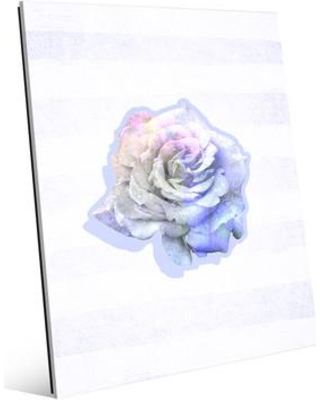 """Click Wall Art Glass Stripes Rose Graphic Art on Plaque BDL0000029GLS Size: 10"""" H x 8"""" W x 1"""" D"""