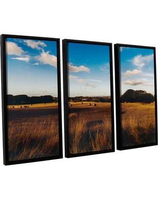 Darby Home Co 'Open Fields' 3 Piece Framed Photographic Print on Canvas Set DRBC8563