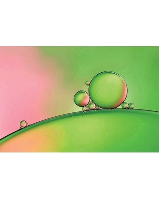 "East Urban Home 'Apple Blush' Graphic Art Print on Canvas URHE1121 Size: 12"" H x 18"" W x 1.5"" D"