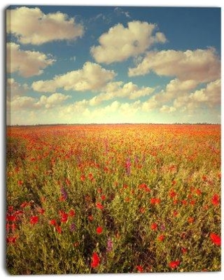 """Design Art 'Poppy Filed Under Bright Sky' Photographic Print on Wrapped Canvas PT12695 Size: 40"""" H x 30"""" W x 1"""" D"""