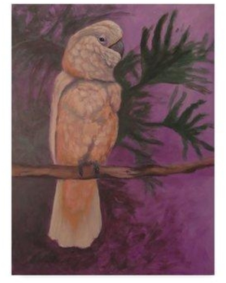 "Trademark Art 'Cockatoo' Graphic Art Print on Wrapped Canvas ALI33174-CGG Size: 32"" H x 24"" W x 2"" D"