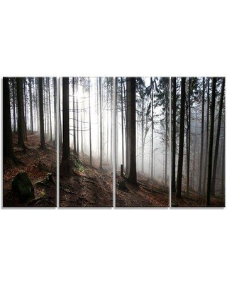 Design Art 'Misty Forest Morning Panorama' Photographic Print Multi-Piece Image on Canvas PT15435-271