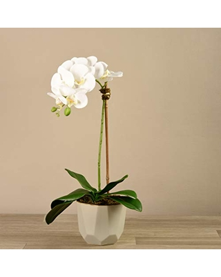 The Best Sales For Bloomr Artificial Cream Geometric Potted Purple Orchid Arrangement Trendy Luxury Silk Fabric Decorative Indoor Faux Orchid Arrangement 24 Tall 2 4 Lbs Vase 5 12