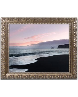Shopping Special For Trademark Fine Art Vik Birds At Sunset By Philippe Sainte Laudy Framed Photographic Print Canvas Fabric In Brown Pink Wayfair Psl0874 G1620f