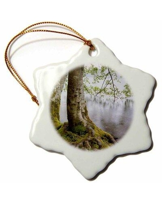 Discover Deals On The Holiday Aisle Usa Washington Olympic Np Alder Trees Overhanging Lake Crescent Snowflake Holiday Shaped Ornament Ceramic Porcelain In Green