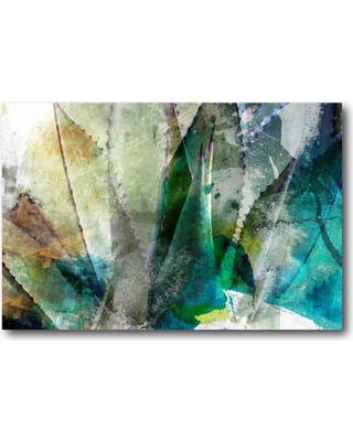 incredible sales on 24 in x 36 in agave abstract ii canvas