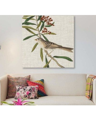 """East Urban Home 'Avian Crop VII' Graphic Art Print on Canvas EBHS5580 Size: 12"""" H x 12"""" W x 1.5""""D"""