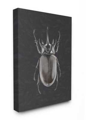 """Stupell Industries Horned Beetle Black Reflective Minimal Bug Insect Art Canvas Wall Art Design by Ziwei Li, 24"""" x 30"""""""