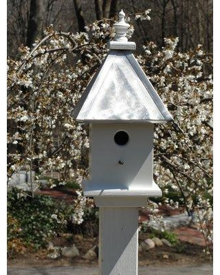 Wooden Expression Birdhouses Manor 19 in x 9 in x 9 in Birdhouse DL43 Color: Burnished