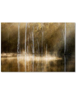 "Trademark Art 'Karri Valley' Graphic Art Print on Wrapped Canvas 1X03219-C Size: 12"" H x 19"" W"