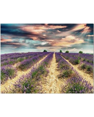 """East Urban Home Floral 'Lavender Meadows in Provence' Photographic Print on Wrapped Canvas ETUC3012 Size: 30"""" H x 40"""" W x 1.5"""" D"""