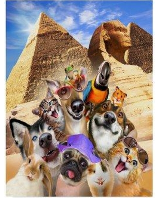 New Deal Alert Trademark Art Puppies At The Pyramids Acrylic