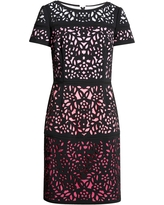 Shani Lace Colorblock Sheath Dress, Size 10 in Black/Pink at Nordstrom