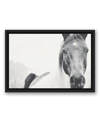 Find The Best Deals On Union Rustic Lone Horse Graphic Art Print On Canvas Format Black Framed Canvas Fabric In Brown White Black Size 33 75 H X 49 75 W Wayfair
