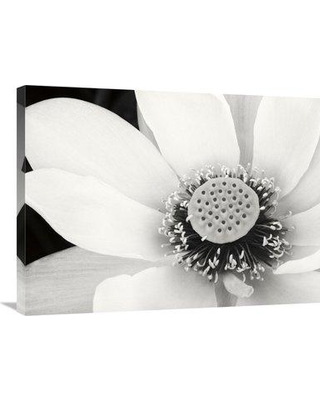 "East Urban Home 'Lotus Flower IV' Photographic Print on Canvas ESUN0777 Size: 24"" H x 32"" W"