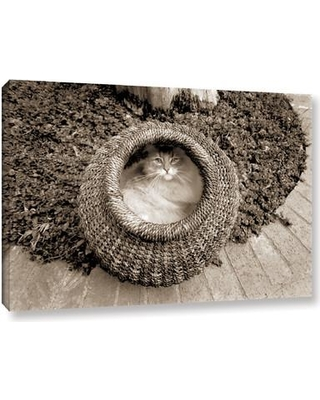 """Latitude Run Cat in Basket Sepia Photographic Print on Wrapped Canvas LATR2862 Size: 24"""" H x 36"""" W x 2"""" D"""