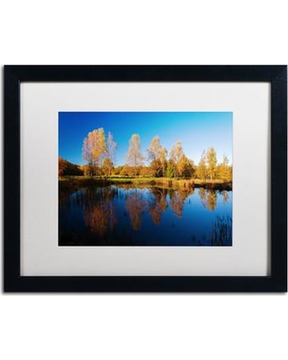 """Trademark Fine Art """"Colors of October"""" by Philippe Sainte-Laudy Framed Photographic Print PSL0411-B1114MF / PSL0411-B1620MF Size: 16"""" H x 20"""" W x 0.5"""" D"""