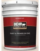 BEHR Premium Plus 5 gal. #ECC-45-2 Canyon Cliffs Flat Exterior Paint and Primer in One